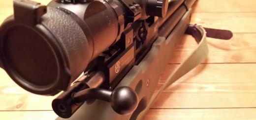 В защиту прав граждан на оружие