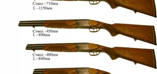 На что влияет длина гладкоствольного ружья
